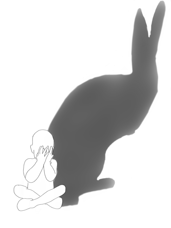 scared shadow